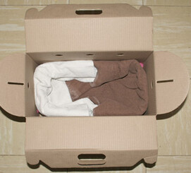 A cardboard box being prepared for the transport of a sick or injured bird